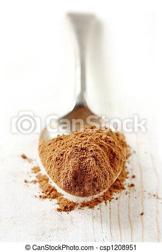 Spoonful of Cocoa Powder - csp1208951