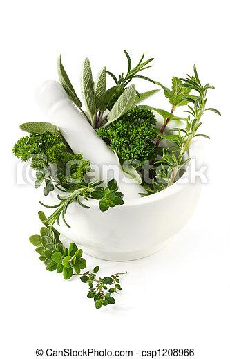 Herbs - csp1208966