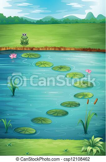 A frog and a lake - csp12108462