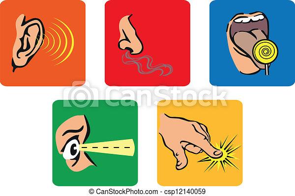 Five senses Clip Art and Stock Illustrations. 272 Five senses EPS ...