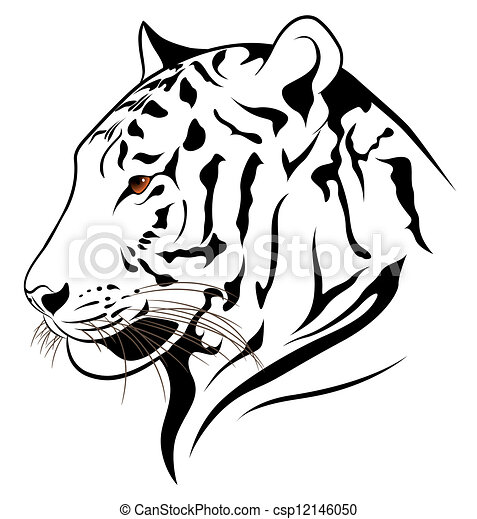 Vecteur clipart de tigre vecteur vector tigre dans les formulaire de csp12146050 - Image dessin tigre ...