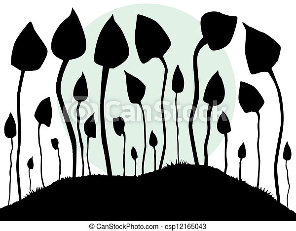 Magic Mushroom Drawings Magic Mushrooms Csp12165043