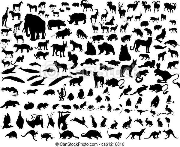 Vector animals - csp1216810