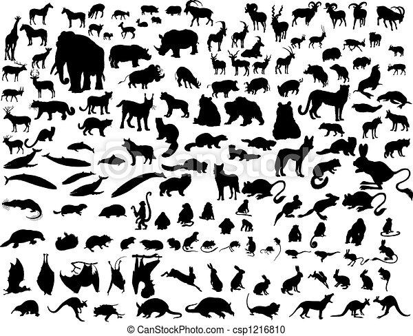 Vector animals - csp1216810