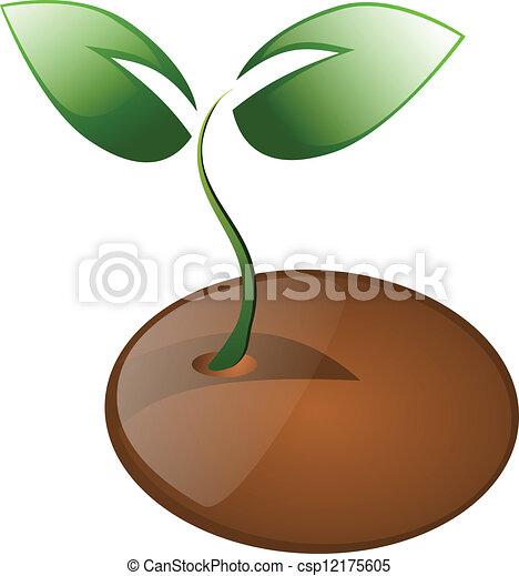 Vector Clip Art de poco, planta, Semilla, aislado - poco, planta ...
