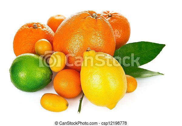 fresh citrus fruit with green leaf - csp12198778