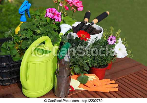 planting flowers with garden tools ,various flowers and herbs in flower pots. - csp12202759