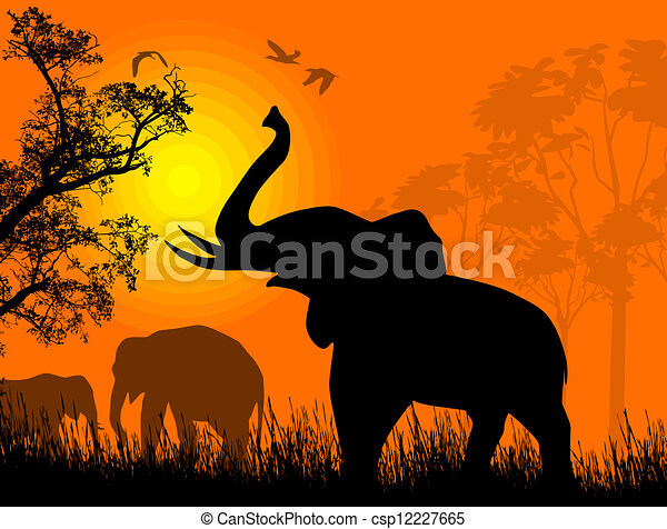 Sunset Canvas Painting With Elephant