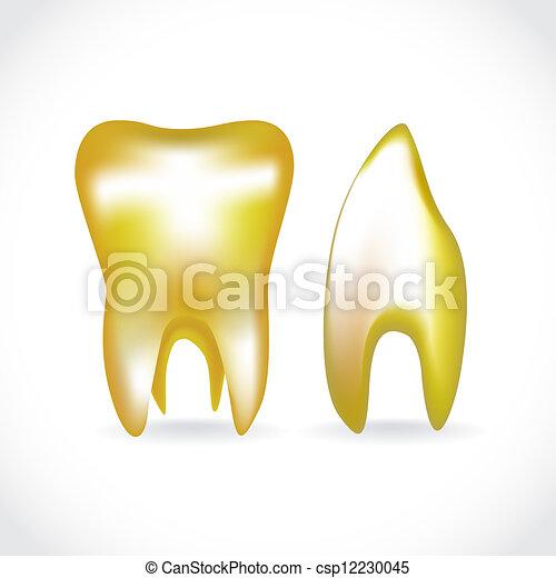 isolated golden human teeth - illustration - csp12230045