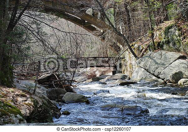 Highway and walk bridges - csp12260107
