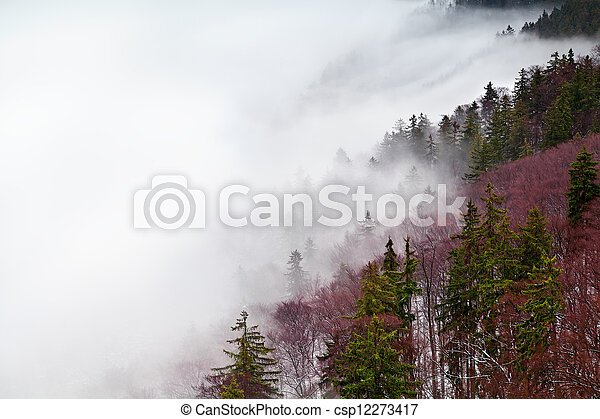Harz mountains in fog - csp12273417