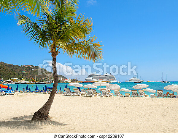 Beach with Palm Tree - csp12289107