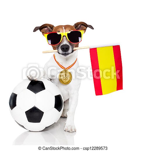 dog as soccer with spanish flag - csp12289573