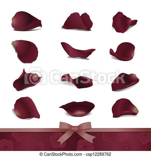 Petalos de rosa dibujos  Imagui