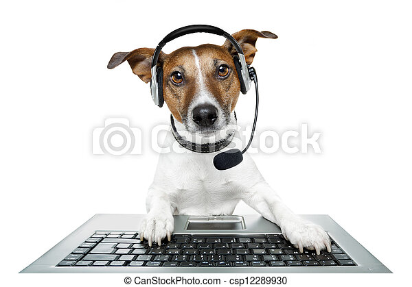 dog computer pc tablet - csp12289930
