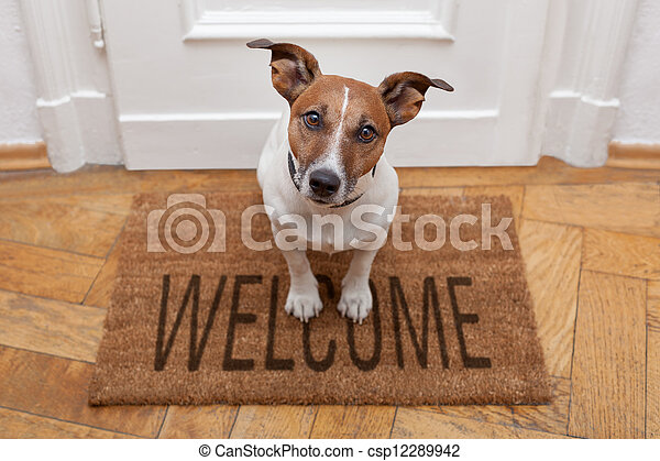 Daheim, herzlich willkommen, hund - csp12289942