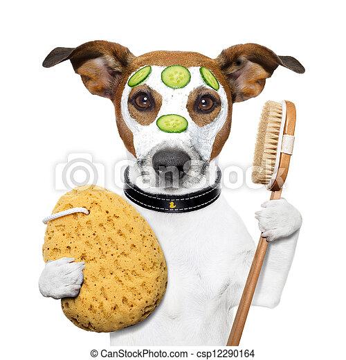 wellness spa wash sponge dog - csp12290164