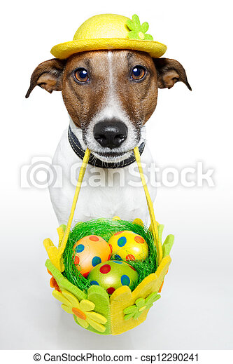 Dog holding colorful easter basket  - csp12290241