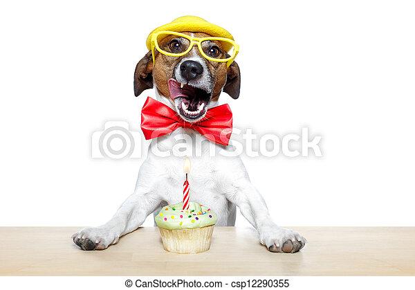 birthday dog cupcake - csp12290355