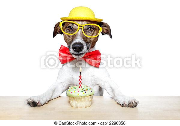 birthday dog cupcake - csp12290356