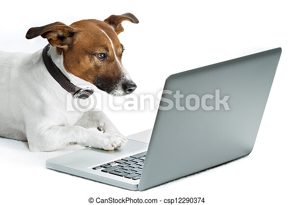 dog computer  - csp12290374