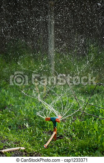 Irrigation - csp1233371