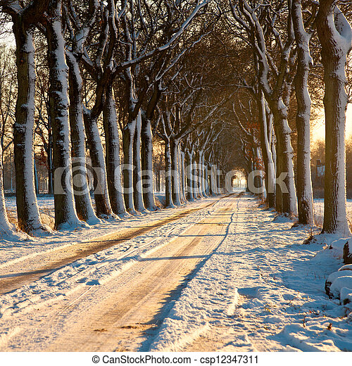 Beatiful Winter Day - csp12347311