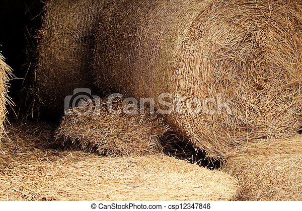 hay bales in a field ( detail ) - csp12347846