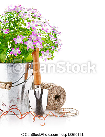 spring flowers in a bucket with garden tools - csp12350161