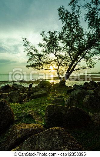 Sunset near the beach - csp12358395