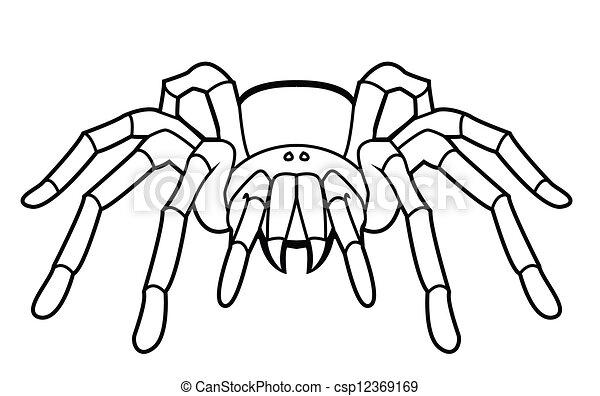 Clip Art Vector of tarantula csp12369169 - Search Clipart ...