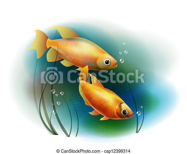 金魚, 恋人, 海ベクトル