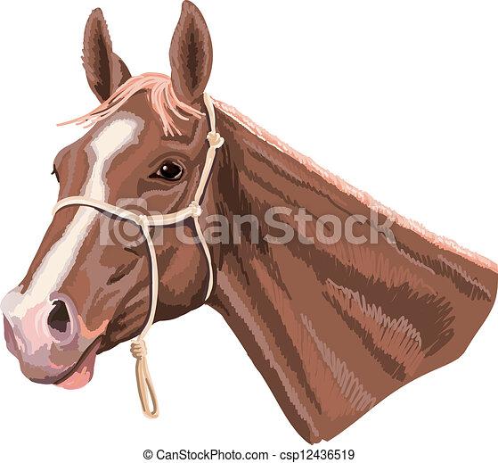 Free Clip Art Horse Head