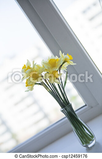 delicate yellow daffodils on the window sill - csp12459176