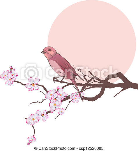 bird and branch of cherry tree - csp12520085