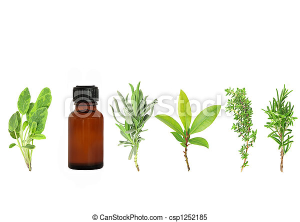 Herbs for Health - csp1252185