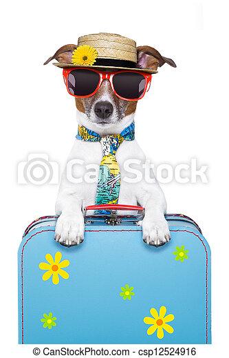 holiday dog - csp12524916