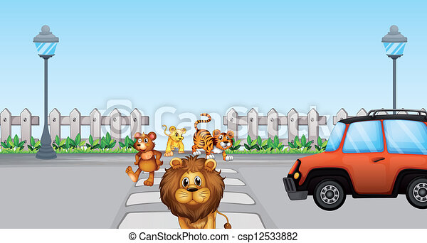 Wild animals crossing and  a car in the road - csp12533882