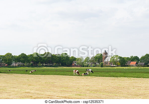 Agriculture landscape with farmhouse and cows - csp12535371