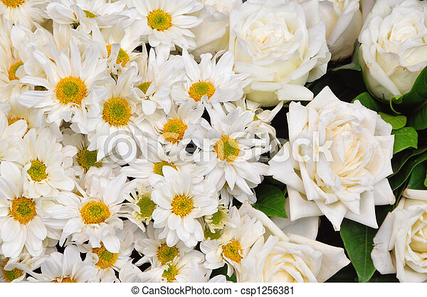 White flowers - csp1256381
