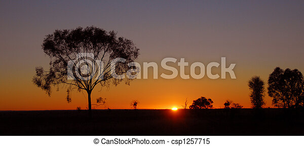 Outback sunrise in Australia - csp1257715