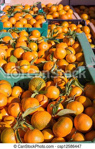 Orange tangerine fruits in harvest in a row baskets