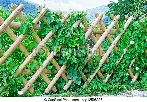 wooden fence - csp12598336