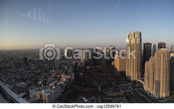 Tokyo Metropolitan Government Building - csp12599761