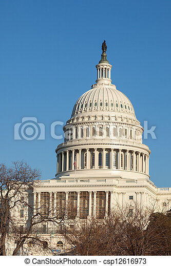 U.S. Capitol Dome Clear Blue Sky - csp12616973