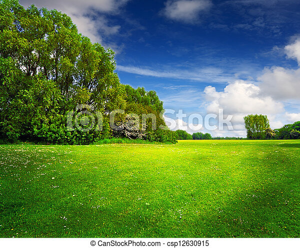 Green spring field and blue sky - csp12630915