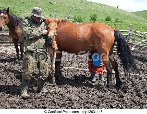à, uomo, e,  à, donna, mungitura,  à, cavallo - csp12631148