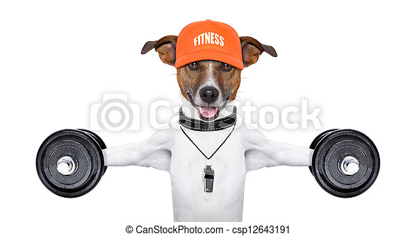 fitness dog - csp12643191