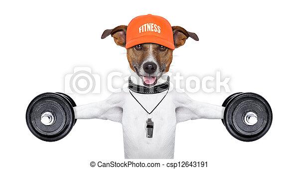fitness dog  - csp12643191