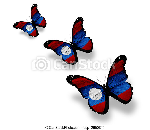 Three Laotian flag butterflies, isolated on white - csp12650811